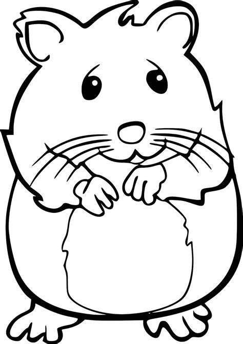 Ausmalbilder Tiere Hamster