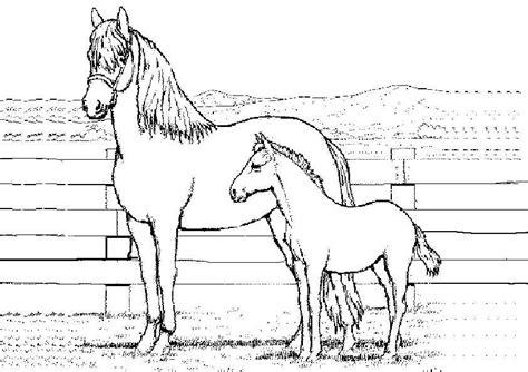 Ausmalbilder Tiere Kostenlos Pferde