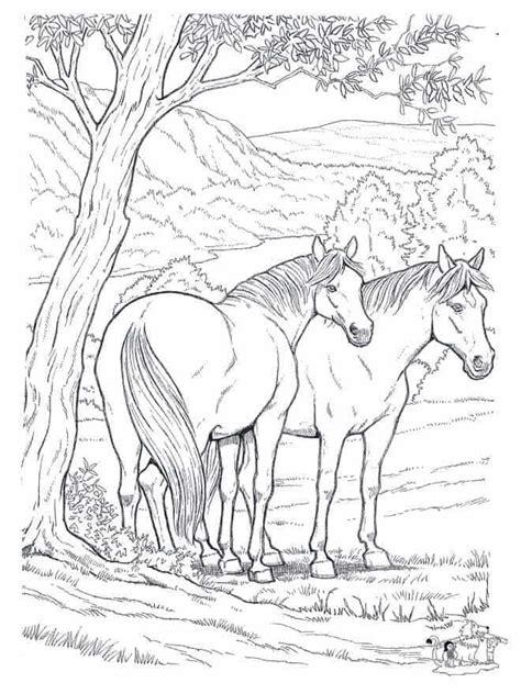 Ausmalbilder Wilde Pferde
