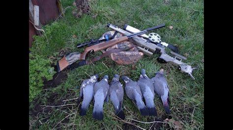 B Walton Air Rifle Hunting Youtube