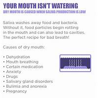 Bad breath fixer latest and greatest bad breath program free trial
