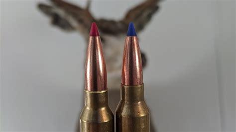 Barnes Vs Hornady Muzzleloader Bullets