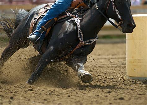 Barrel Racing Horse Insurance