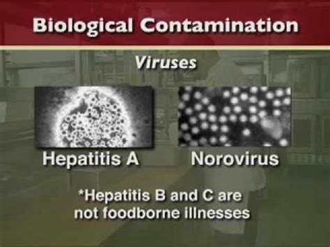 Basic Food Safety Course Part 1 Introduction