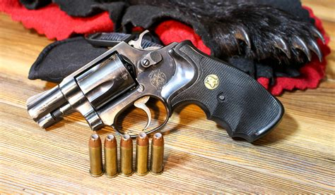 Bear Country Handgun