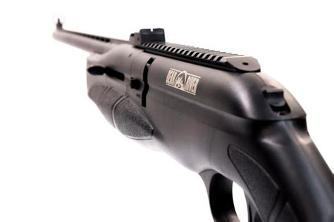 Bear River Mx 1000 Air Rifle