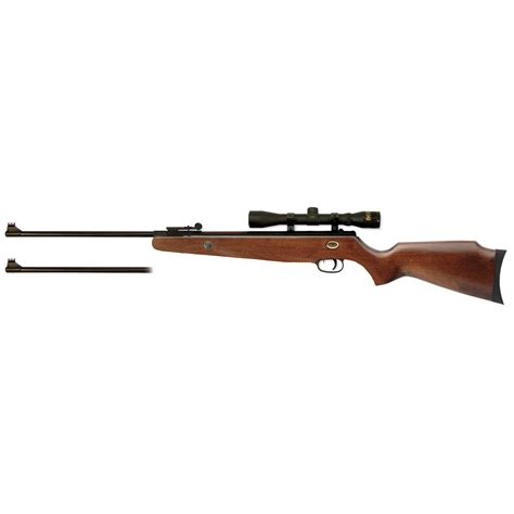 Beeman Dual Caliber Pellet Rifle