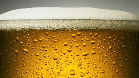 Beer Wallpaper HD Wallpapers Download Free Images Wallpaper [1000image.com]