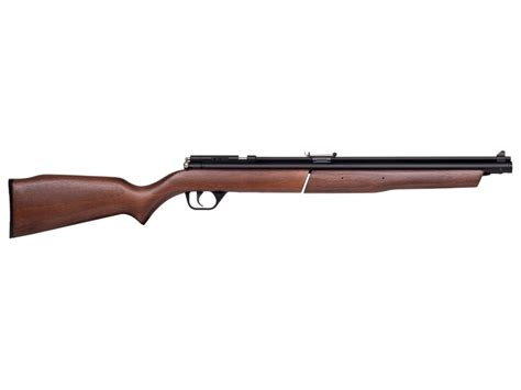Benjamin 22 Caliber Air Rifle Repair Kit With Pump