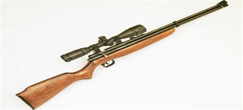 Benjamin Discovery Air Rifle Manual