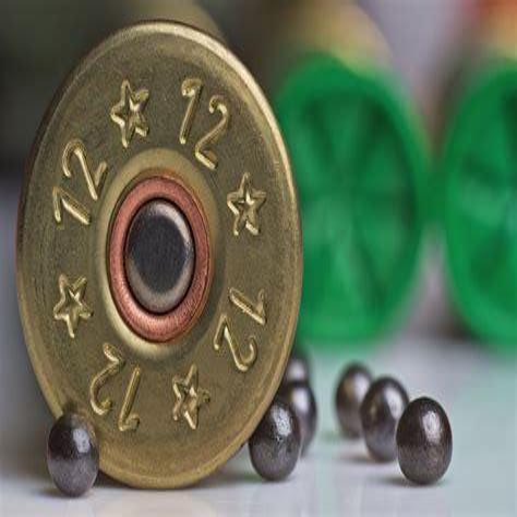 Best 12 Gauge Shotgun Shell For Trap Shooting