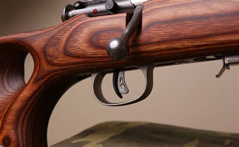 Best 17 Wsm Rifle For The Money