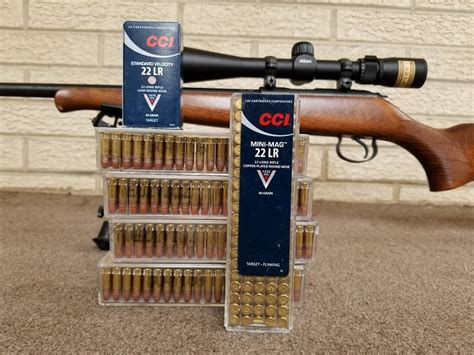 Best 22 Ammo For Hunting
