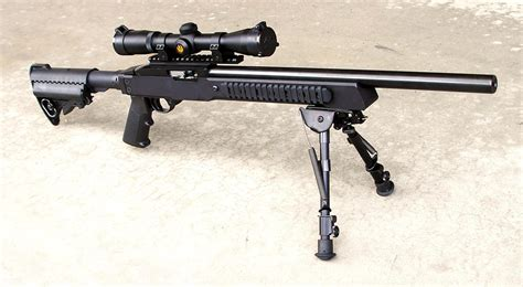 Best 22 Magnum Rifle For The Money