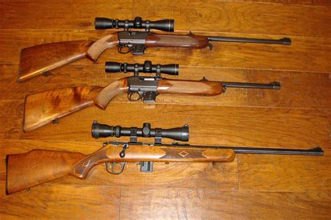 Best 22 Magnum Rifle Site Www Rimfirecentral Com