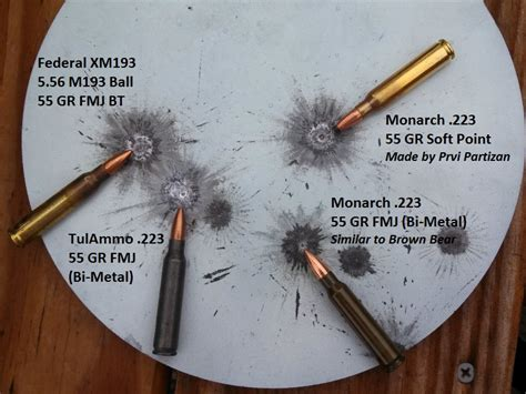 Best 223 Ammo For Steel Targets