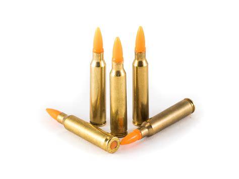 Best 223 Dummy Training Ammo