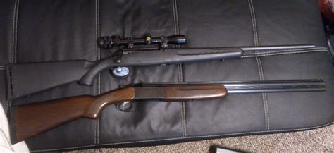Best 243 Rifle For Under 500