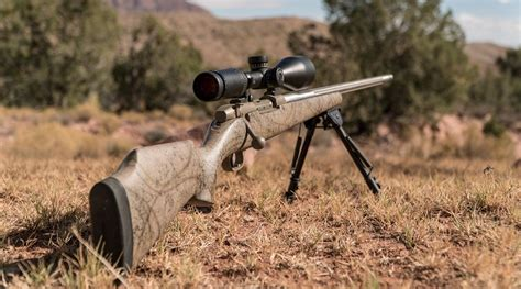 Best 3006 Rifle For The Money 2018