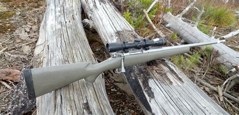 Best 308 Hunting Rifle For Elk