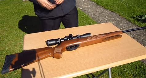 Best Air Rifle For Hunting Rabbits