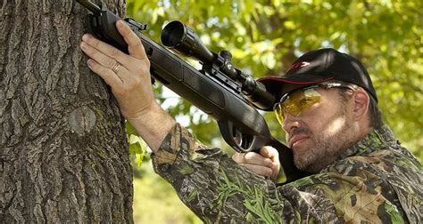 Best Air Rifle For Killing Rats