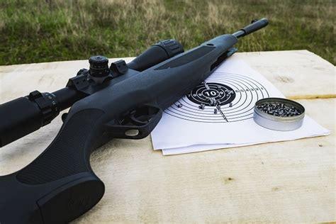 Best Air Rifle Under 175