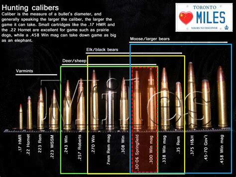 Best All Around Rifle Calibers