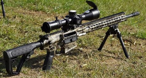 Best Ar10 Rifle For The Money