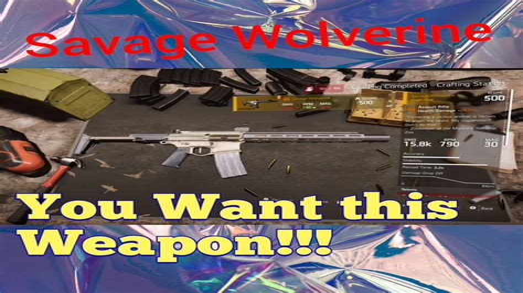 Best Assault Rifle Division 1 5
