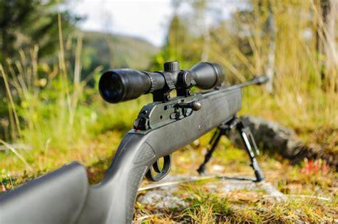 Best Budget Rifle 2015