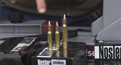 Best Caliber Hunting Rifle For Elk