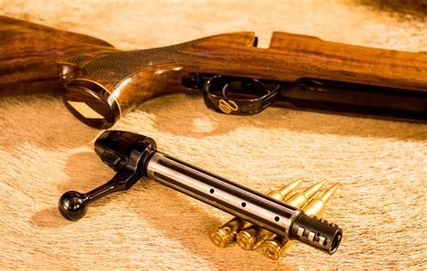 Best Controlled Feed Rifles