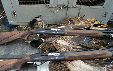 Best Entry Level Shotgun For Duck Hunting