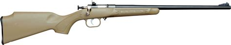 Best First 22 Rifle For Youth