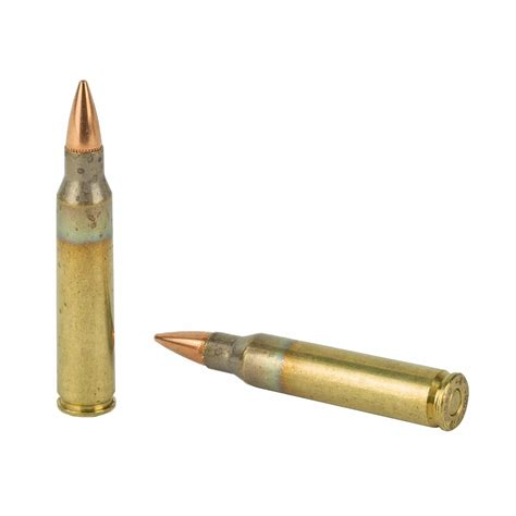 Best Grain 556 Ammo