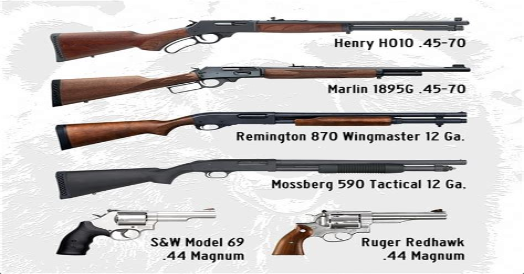 Best Handgun For Protection Against Bears