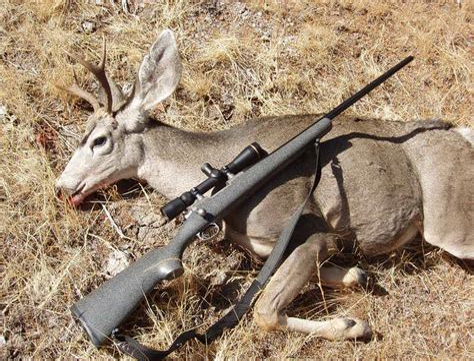 Best Handgun To Hunt Deer
