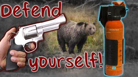 Best Handgun Vs Bears