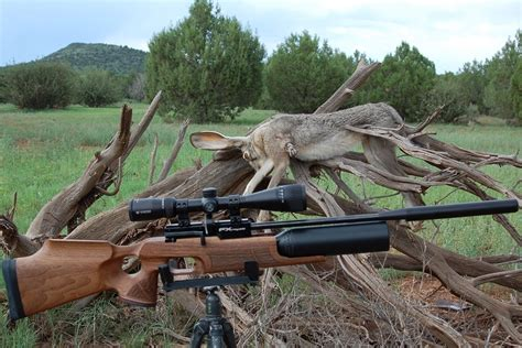 Best Hunting Air Rifle Review