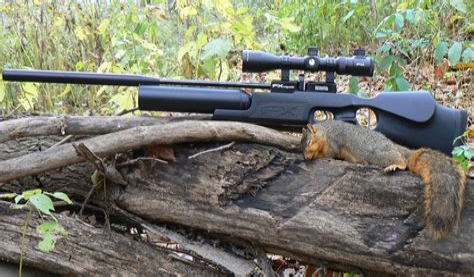 Best Hunting Air Rifle 2016