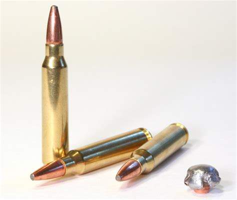 Best Hunting Ammo For Ar 15