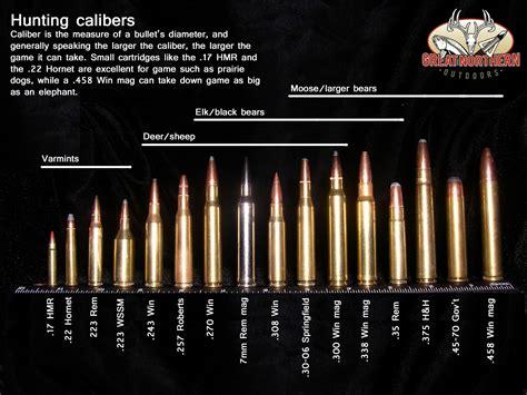 Best Hunting Rifle Ammunition