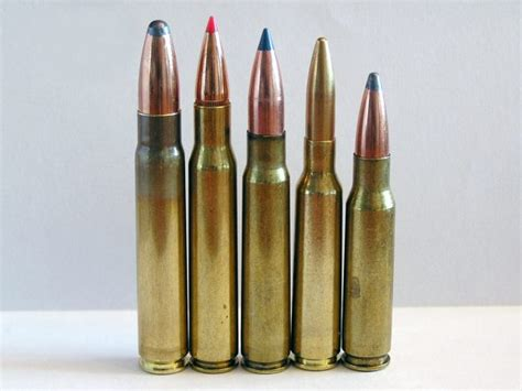 Best Hunting Rifle Caliber For North America