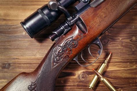 Best Hunting Rifles Under 500