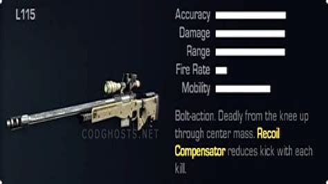 Best Long Range Assault Rifle Cod Ghosts