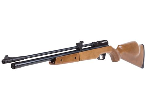 Best Multipump Air Rifle Reviews