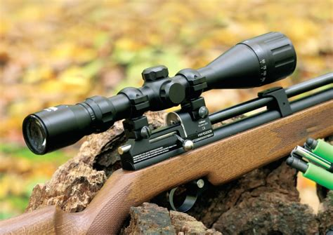 Best Pcp Air Rifle 2017 For The Money