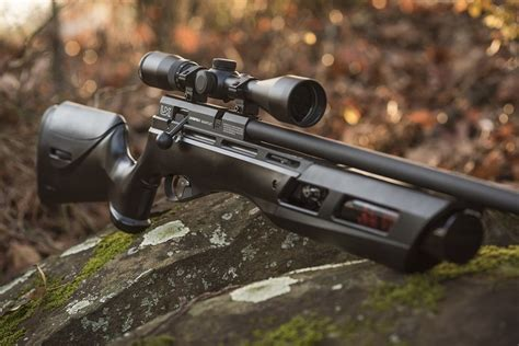 Best Pcp Air Rifle For Hunting