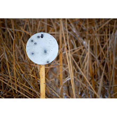 Best Price Ar500 Round Steel Target Cts Targets